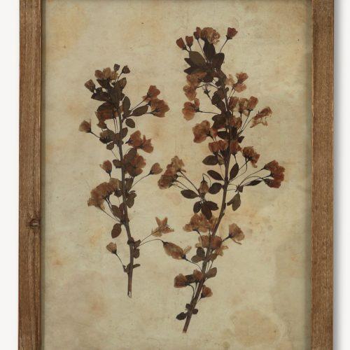 Floral Leaf Print