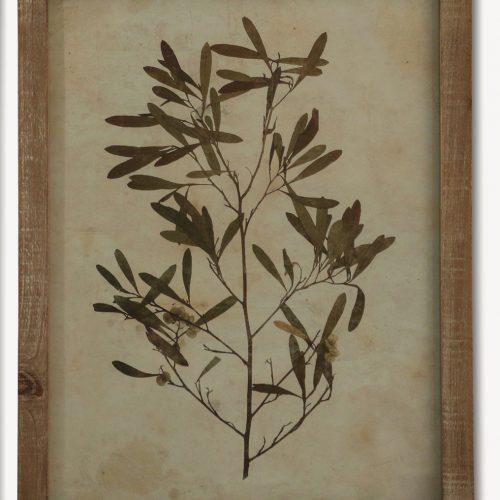 Mediterranean Leaf Print